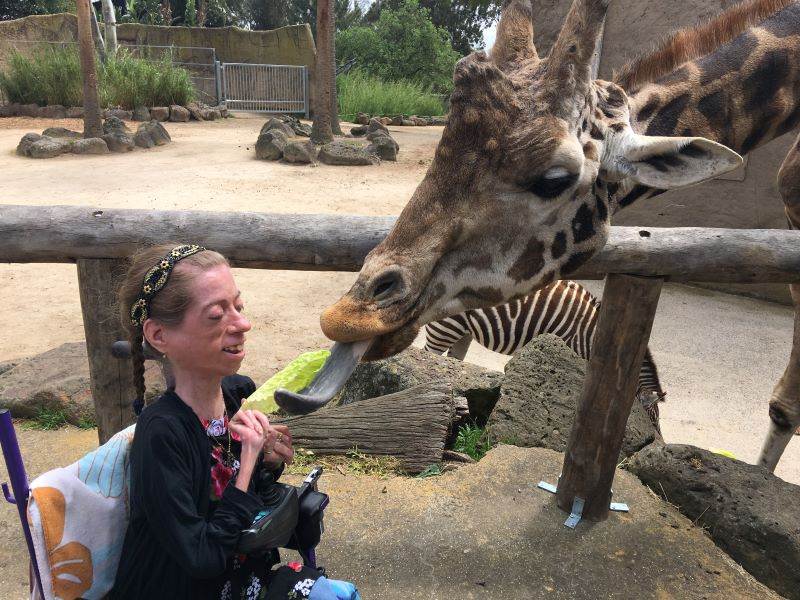 Melbourne zoo wheelchair access encounters