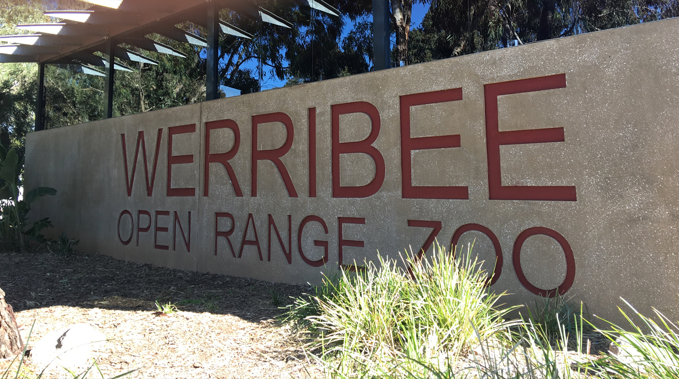 Wheelie accessible adventures werribee open rang zoo