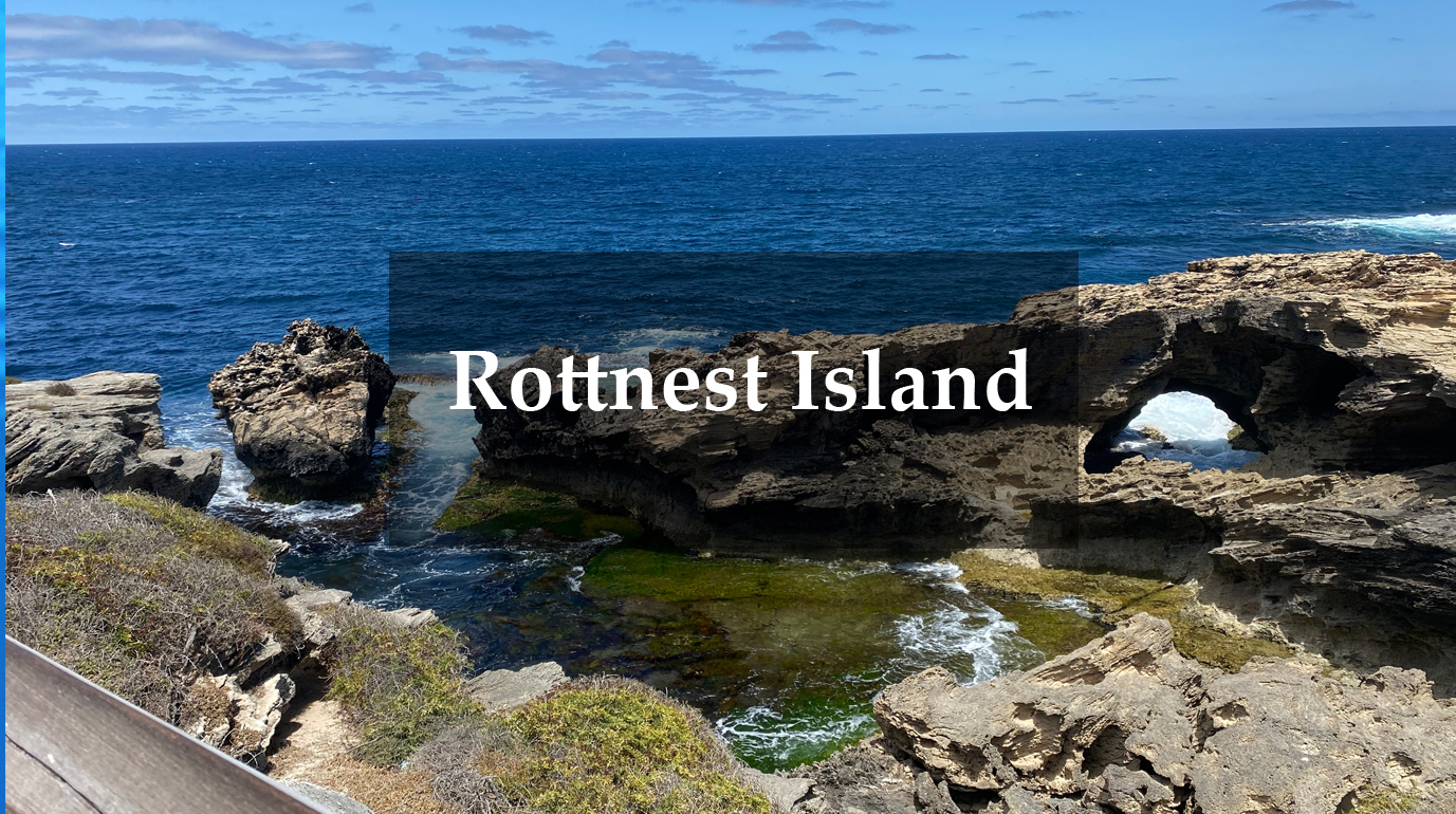 Wheelie Accessible Adventures Rottnest Island Review